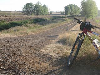 Ruta por el Canal de Castilla 2012: leer, nadar, pedalear