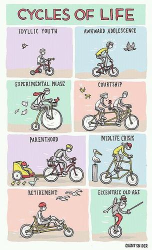 Los (bi) ciclos de la vida