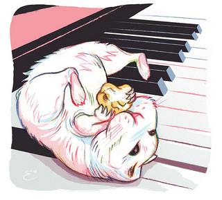 Exclusiva: no creo que vaya a ser pianista