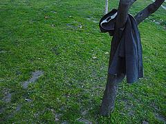 El parque Tierno Galván y la primavera