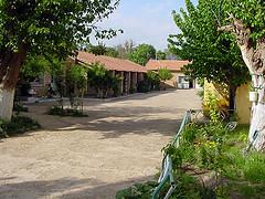 El colegio verde de Mellakou