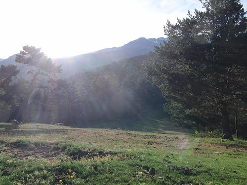 Vivac: paseo de Cotos a Rascafría
