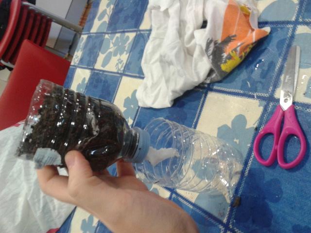 Cómo construir un semillero autorregable