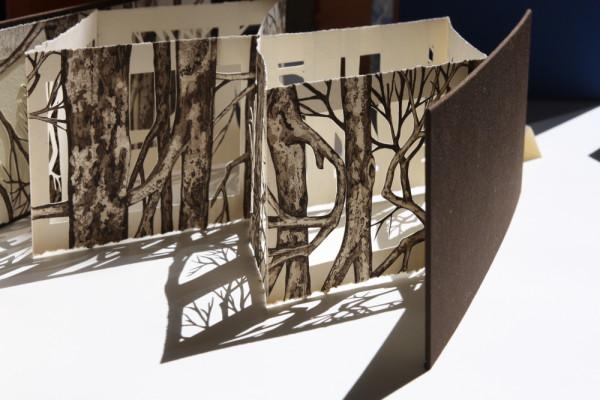 F+QL07 - libro recortado y sombras