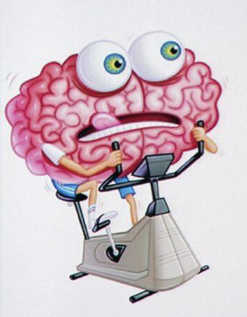 Cerebro en bicicleta estática