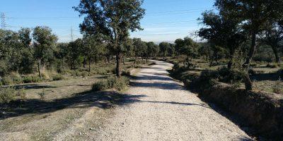 uno de los caminos de la dehesa de valdelatas en madrid