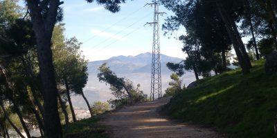 Camino ancho de tierra. A los lados pinos. Al fondo antena y lejos montañas