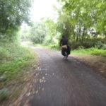 olga en un bosque con bici bajo lluvia
