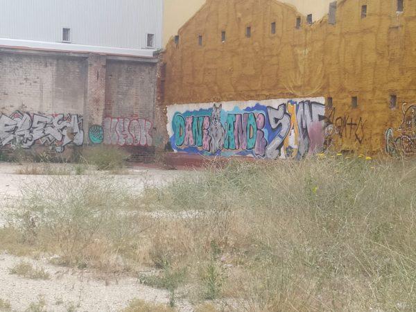 Graffiti enorme en solar: Dani amor y gato entre ambas palabras. Mucho color