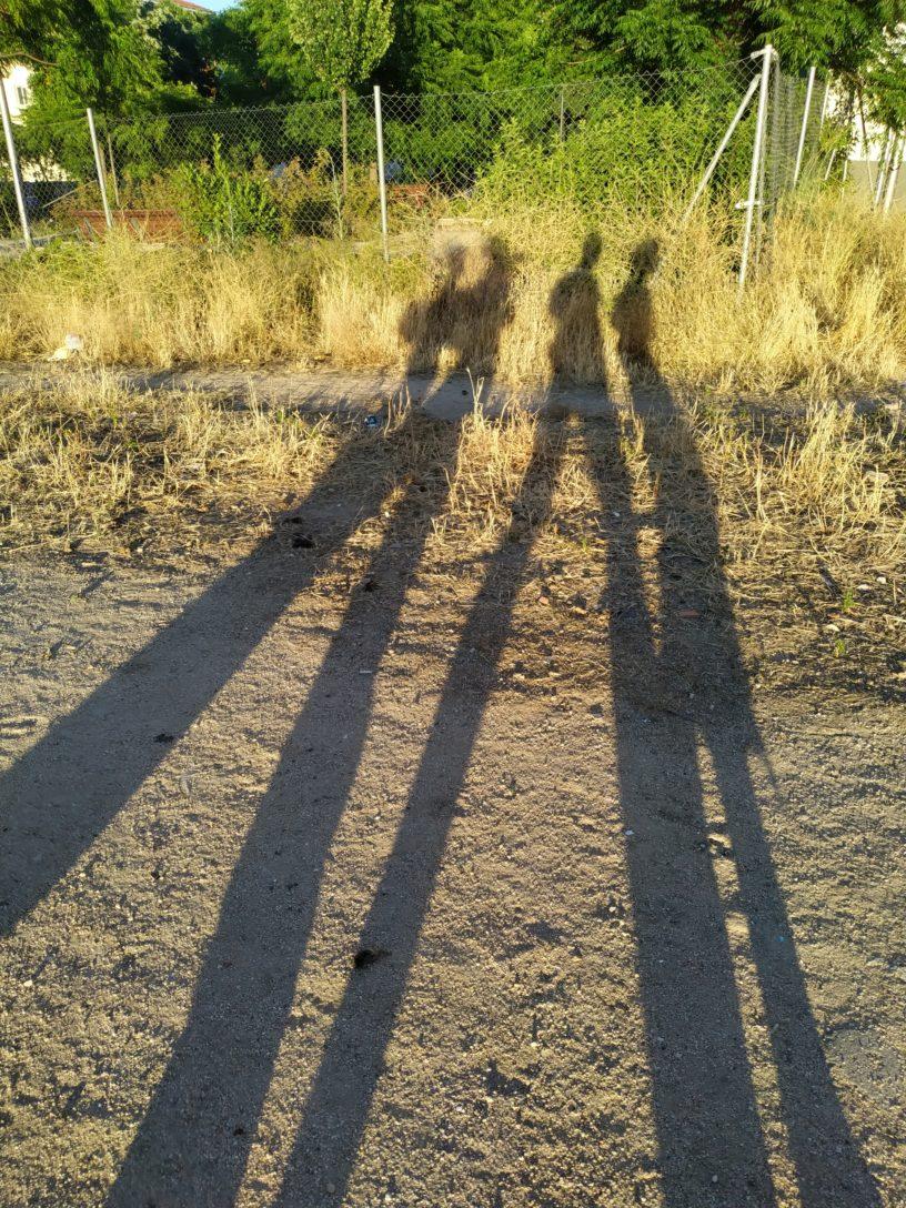 4 sombras largas caminan en un descampado